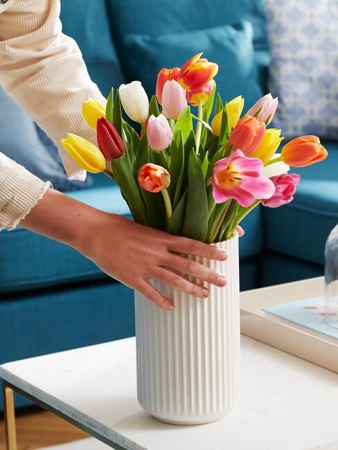bukiet tulipanów w białym wazonie na drewnianym stoliku kawowym przy niebieskiej sofie