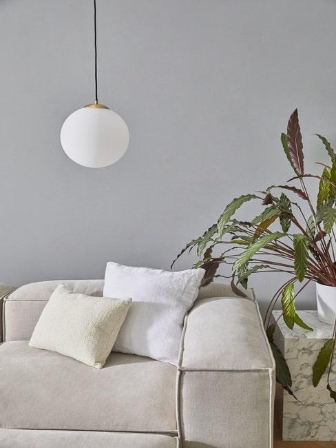 Roślina stojąca na marmurowym bloku w salonie