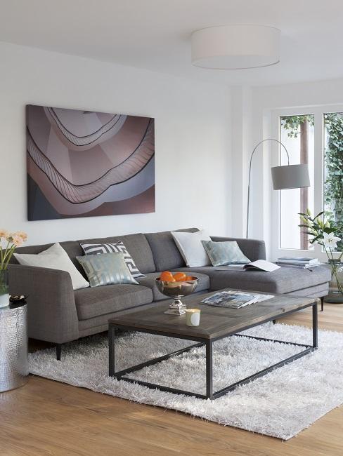 Salon z szara sofą, metalowym stolikiem kawowym, rosliną w kącie i puchowym dywanem