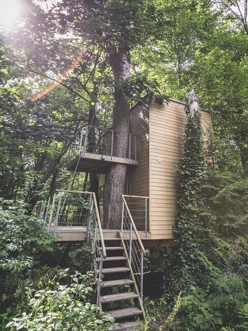 """Jeden z apartementów domki """"W Drzewach"""""""