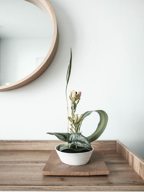 Kwiaty ułożone w stylu ikebana