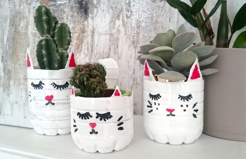 DIY kočičí květináč