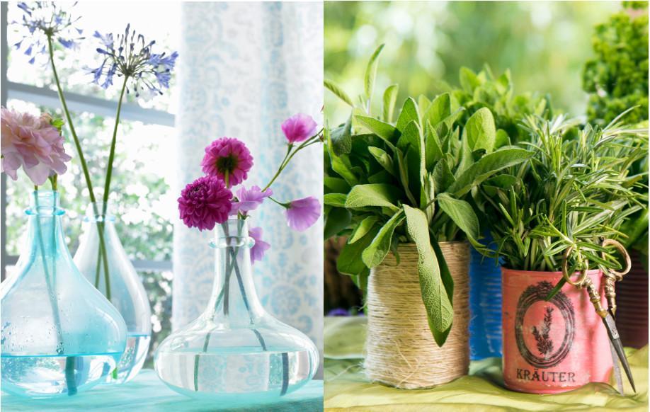 westwing-été-plantes