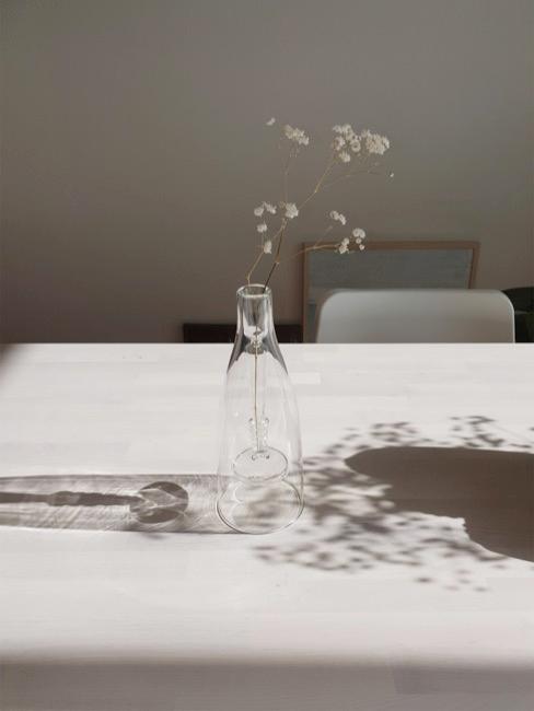Schleierkraut in Vase auf Esstisch