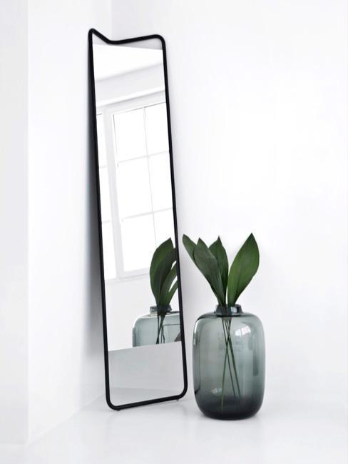 Habitación con suelo y paredes blancas, espejo y jarrón de plantas minimalista