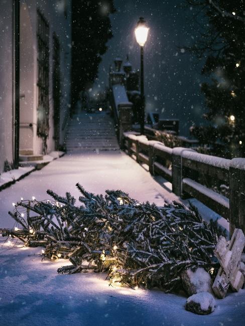 Weihnachtsbaum auf der Straße umgefallen im Schnee