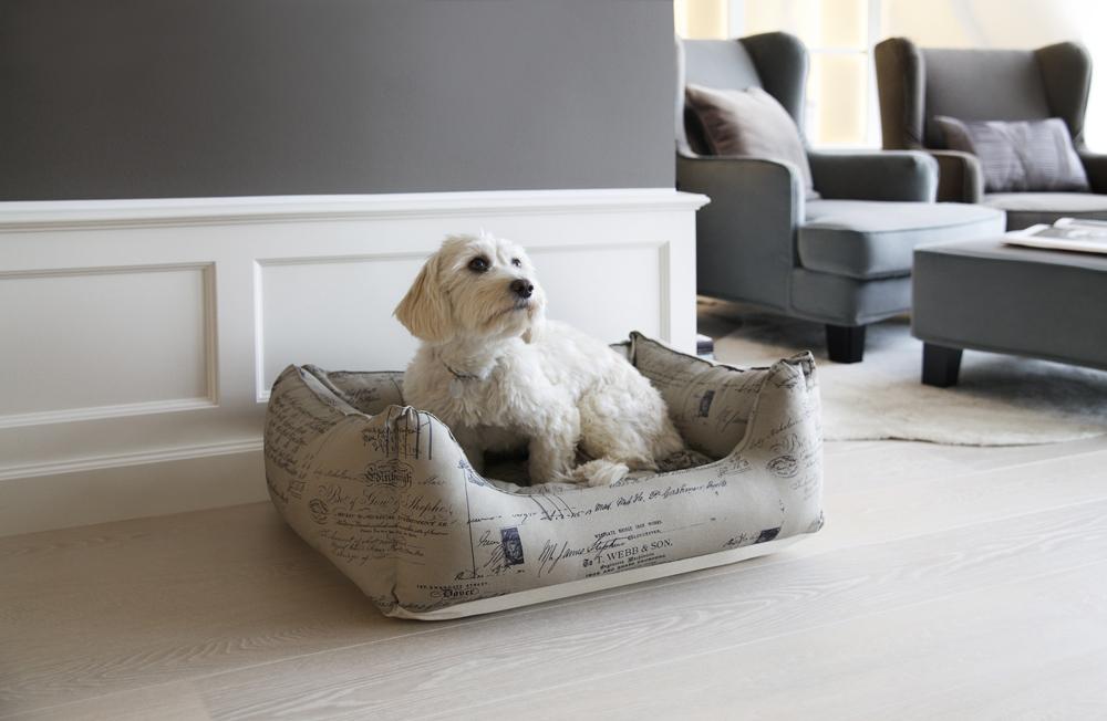 Westwing_Mood_Leben-mit-Hund_FINAL_1