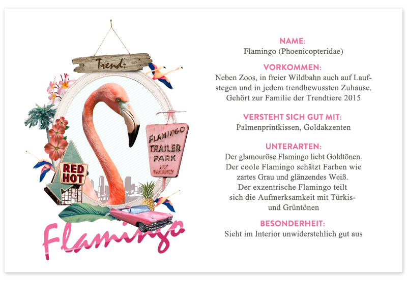 Trendtier Flamingo Interior Trend
