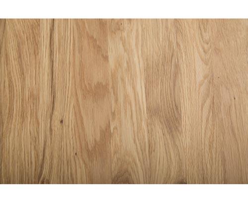 Holz Eiche Querschnitt