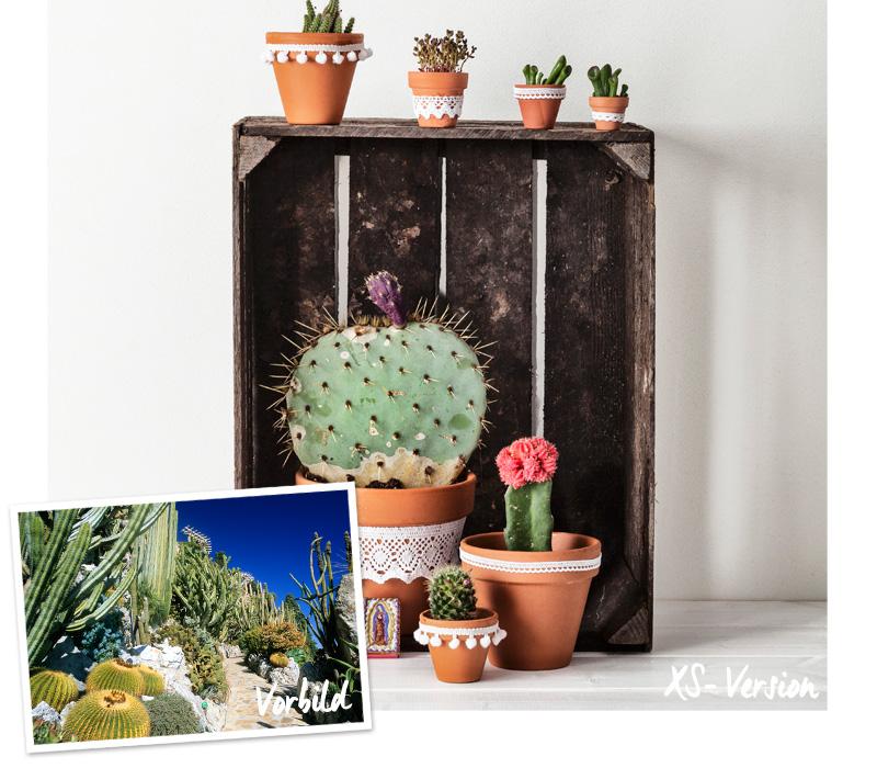 DIY Süsse XS-Gärten Westwing Magazin