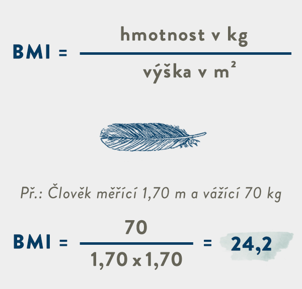 královská kontinentální postel výpočet BMI