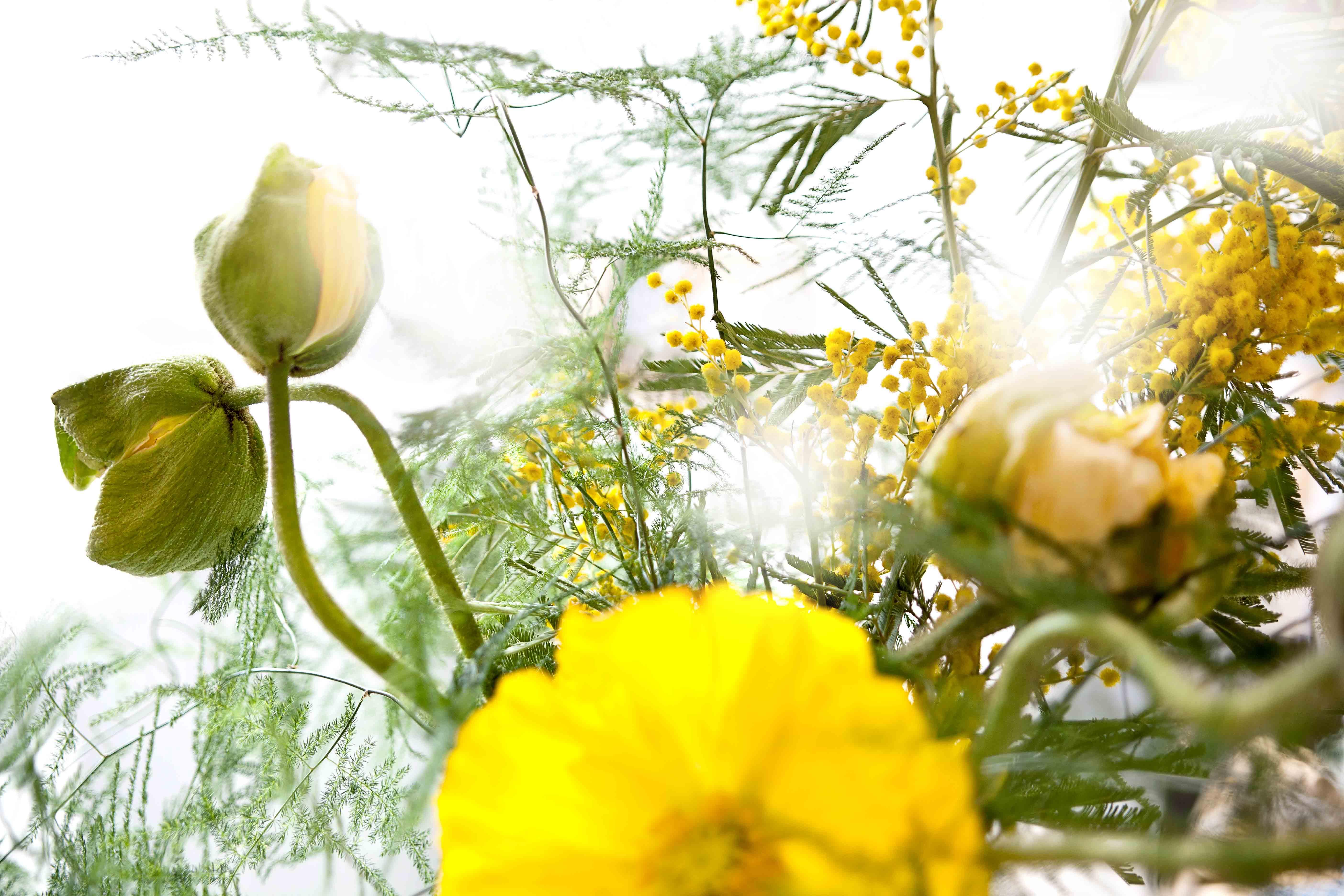 retro styl květiny