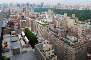New York Rooftop Gardens 4