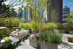New York Rooftop Gardens 9