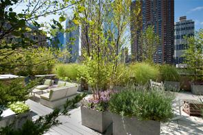 New York Rooftop Gardens 9