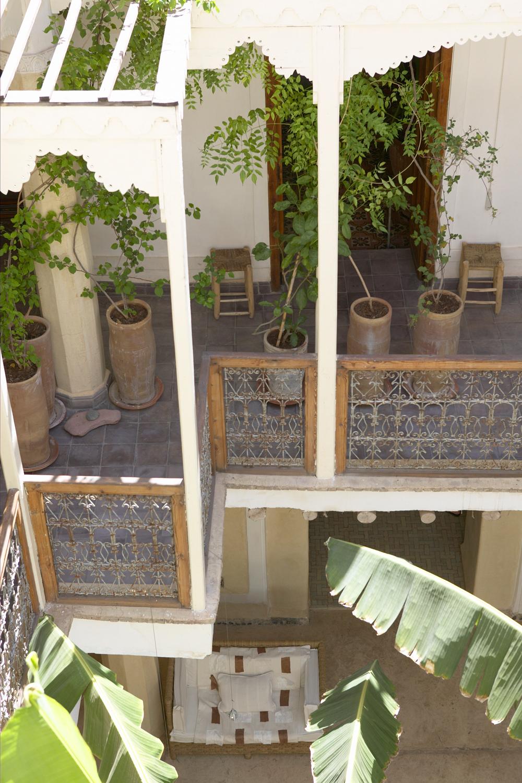 Planzen terrasse Marrakech