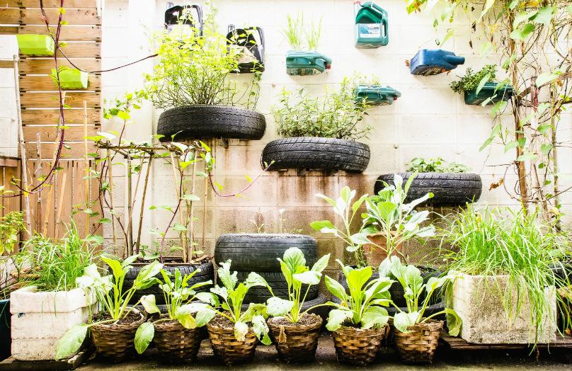Urbaner Garten: Grün-Trend zu Hause