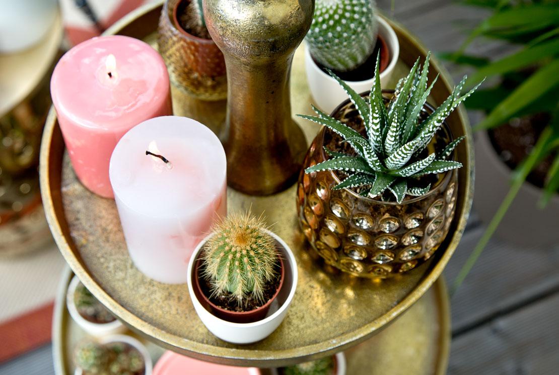 jenny knäble pflanzen Kerzen etagere