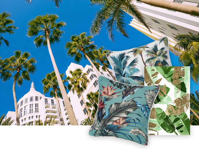 Miami Palmen