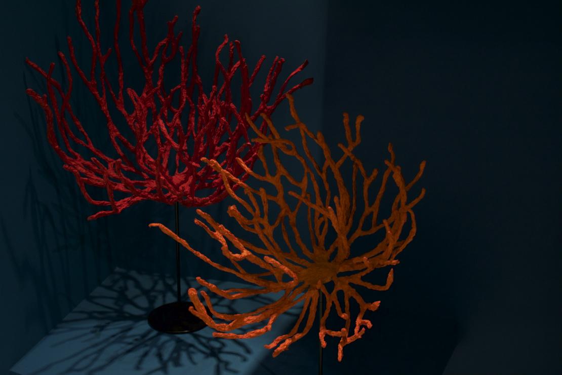 maison-objet-korallen-deko
