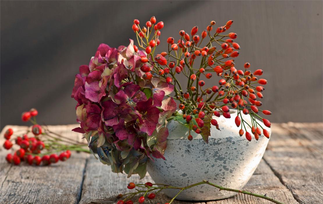 herbstgefuehle-blumen-bouquet-rot
