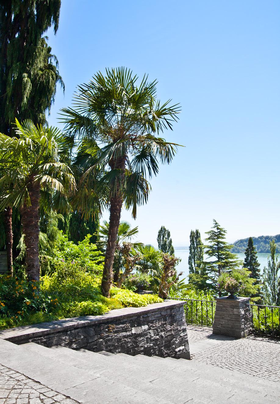 westwing-zuhause-bei-graefin-sandra-bernadotte-palmen