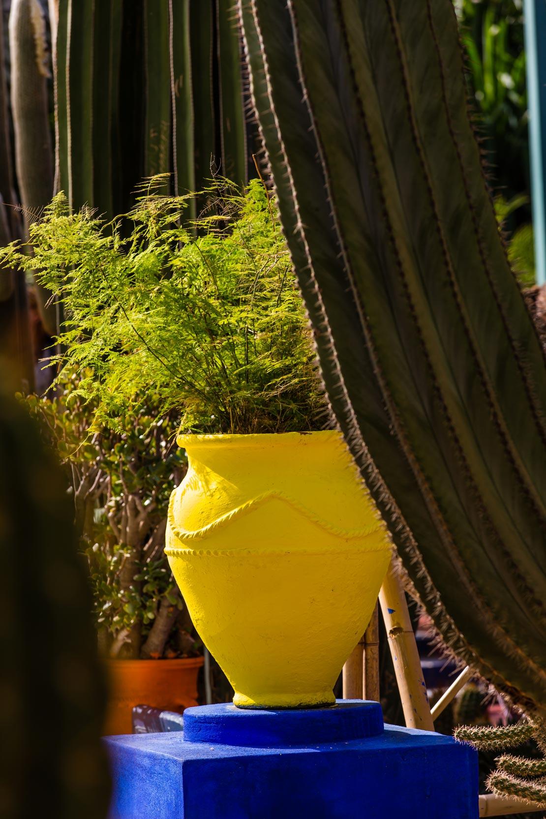 westwing-jardin-majorelle-blumentopf-gelb