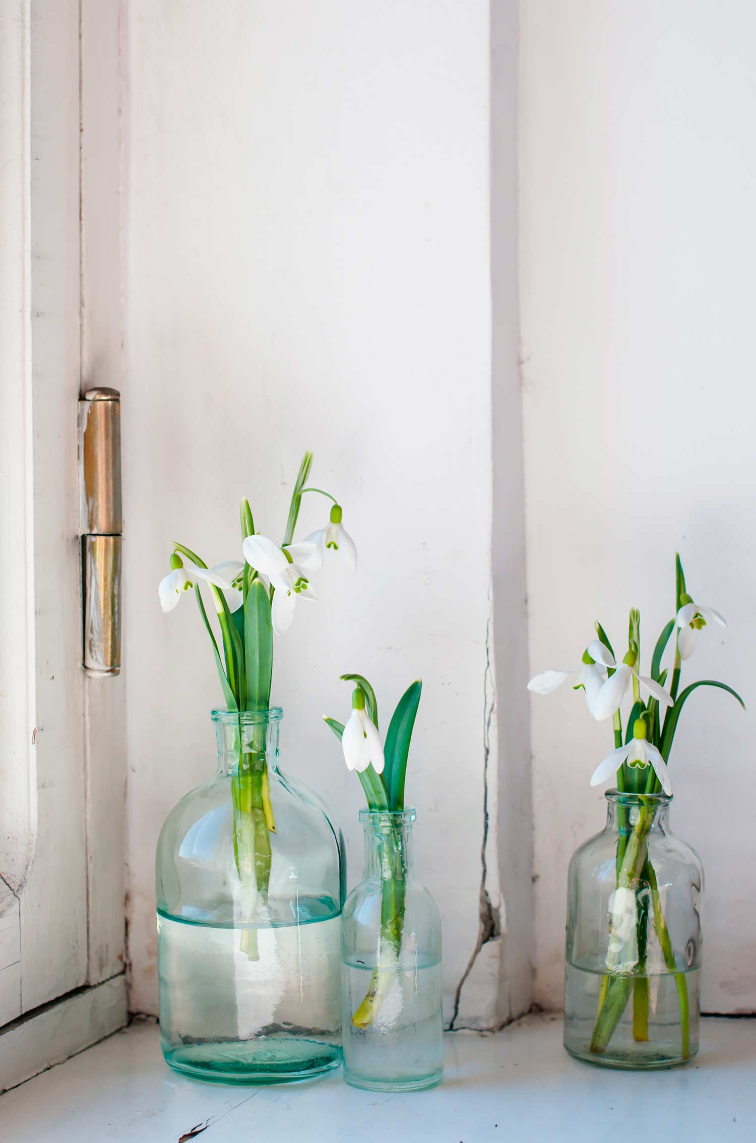 10 ideas para decorar con flores westwing magazine for Jarrones grandes