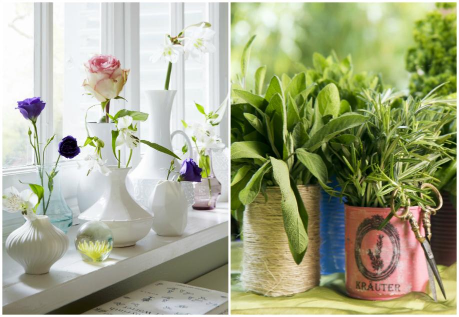 westwing-decoracion-verano-plantas