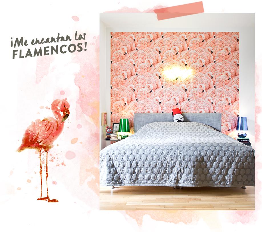 En casa-martin-schmieder-flamencos