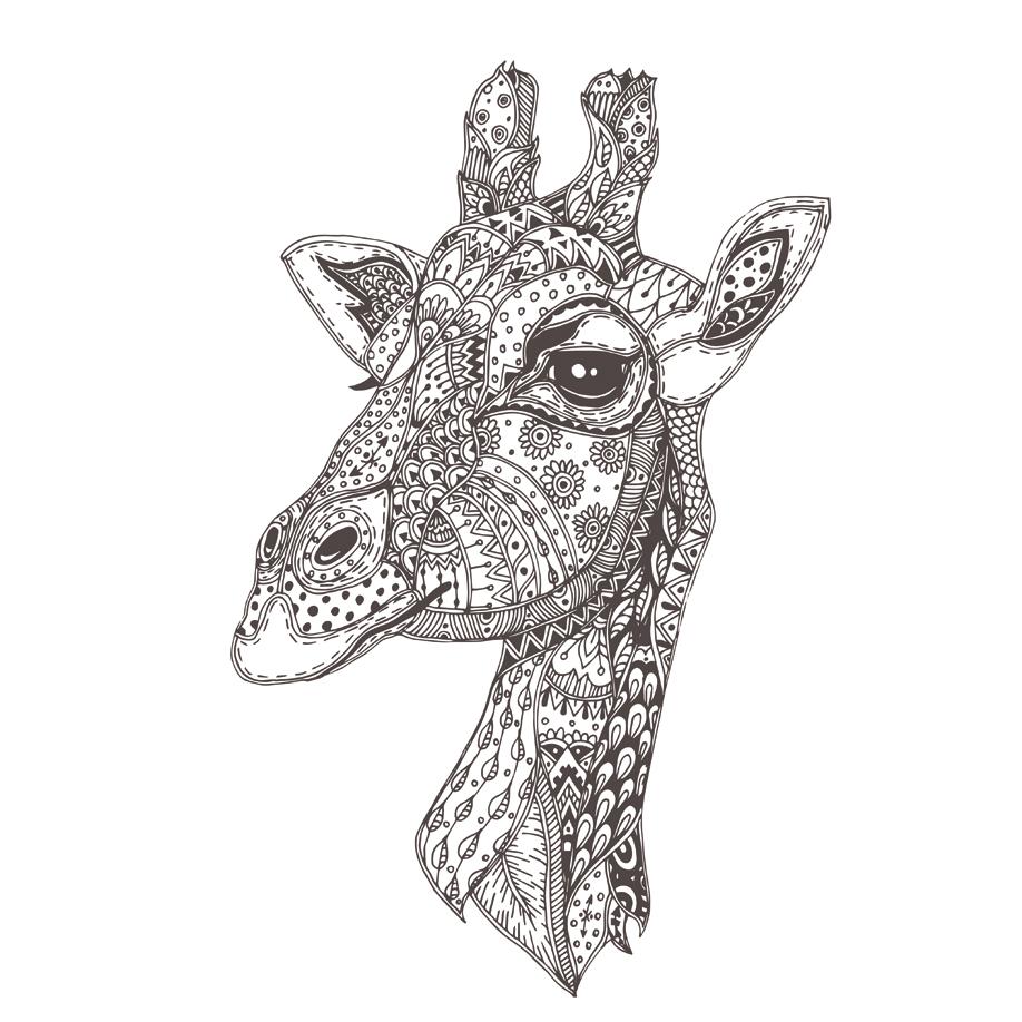 westwing-libros-para-colorear-jirafa