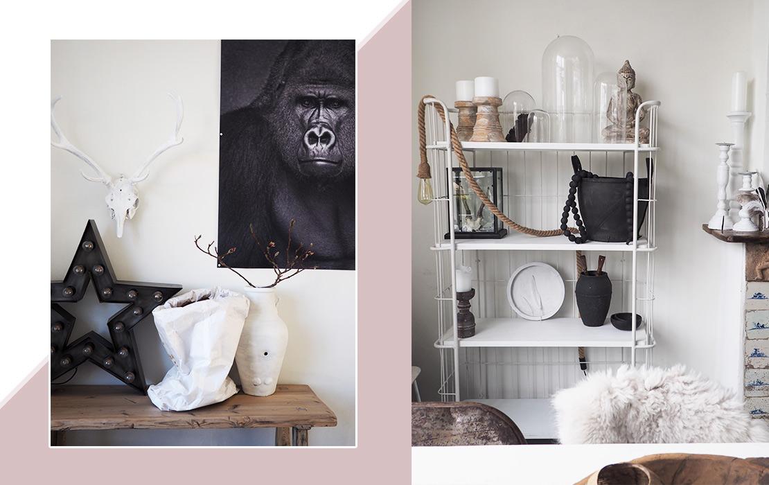 casa-bloguera-orangutan