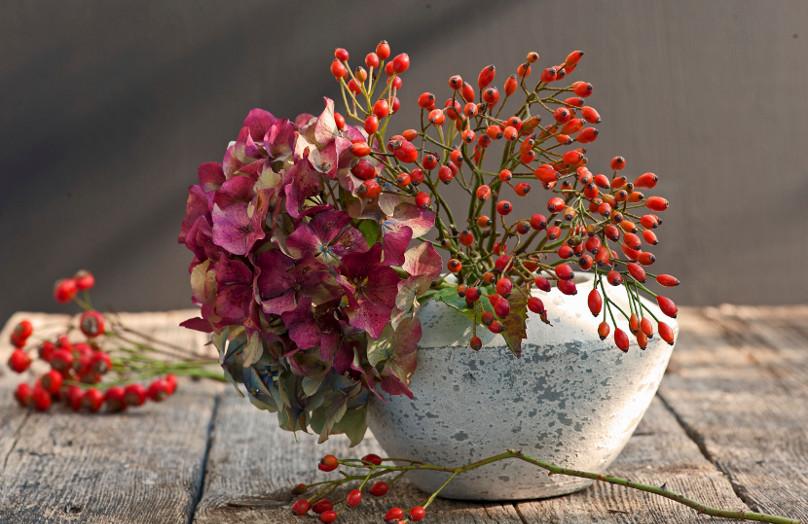 Los 7 imprescindibles del otoño en decoración
