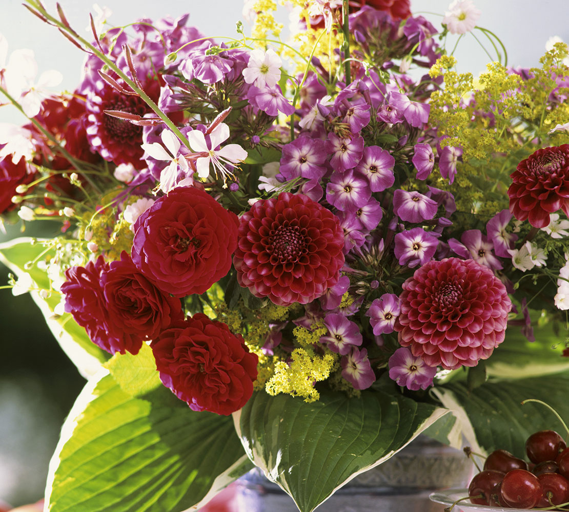 flores de otoño para casa