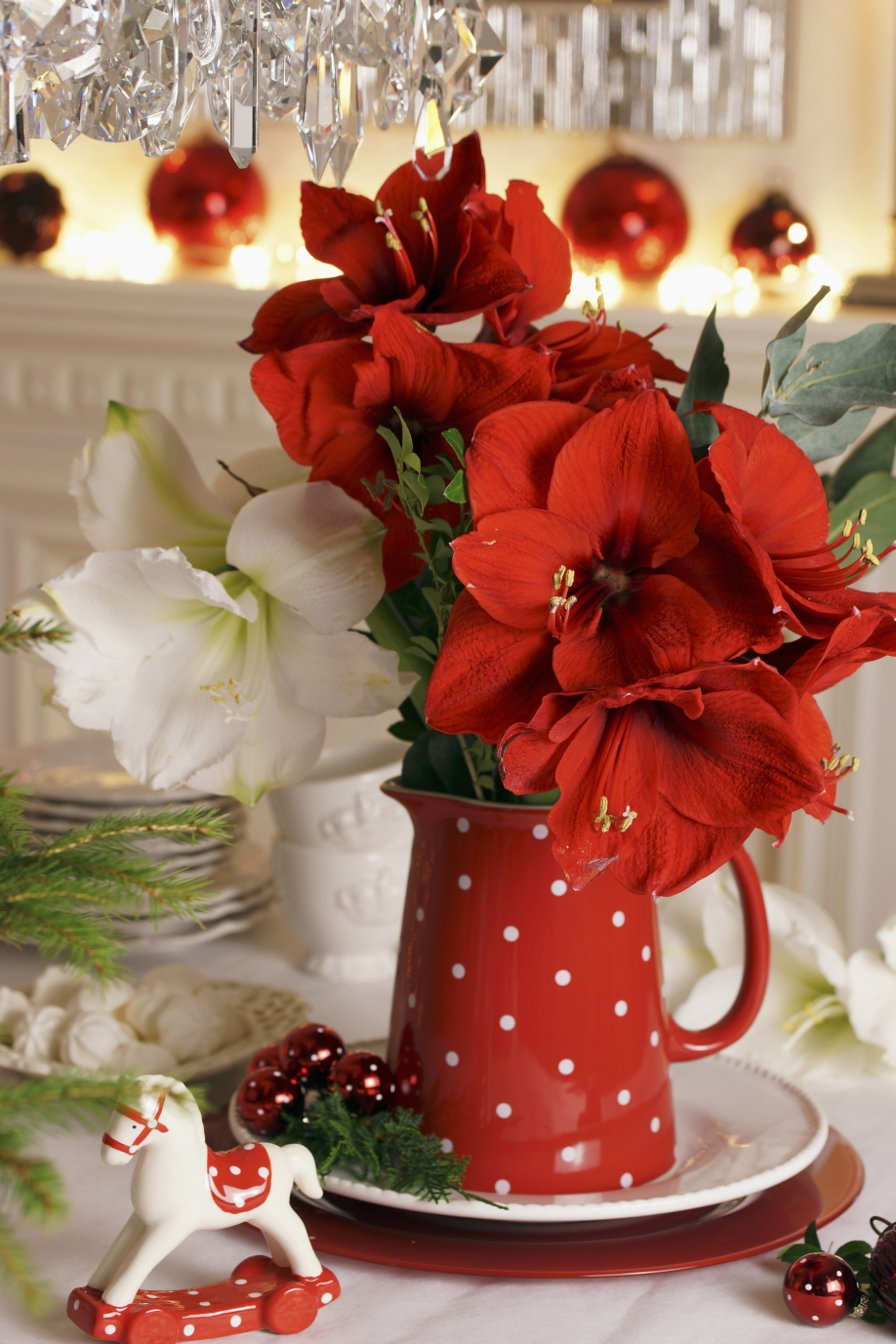 Las-flores-tambié-son-para-el-invierno1