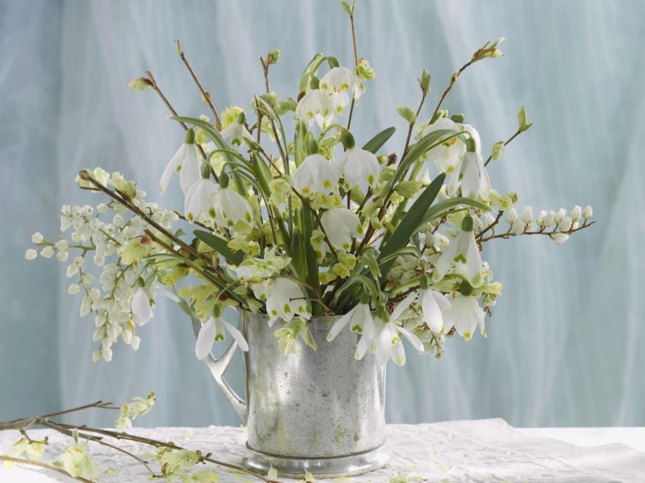 Las-flores-también-son-para-el-invierno2
