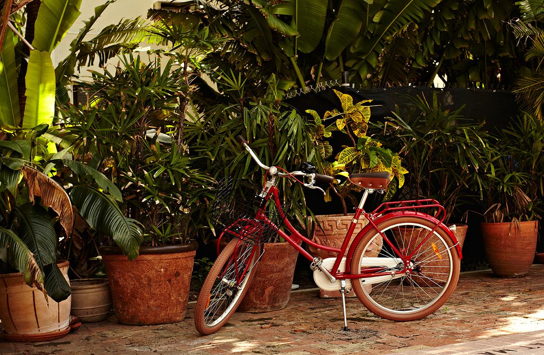 La atención al cliente está cuidada al detalle. Alquiler de bicis, oferta de excursiones y consejos y recomendaciones para todo tipo de viajeros