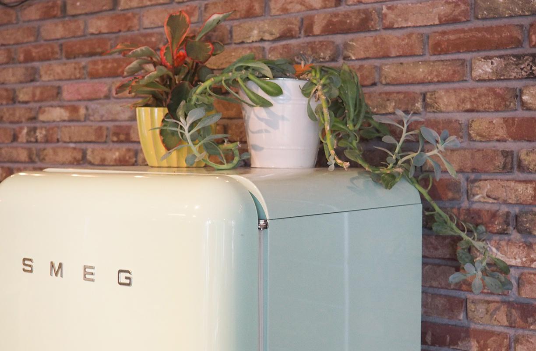 Lo natural cobra especial importancia en Ecomama, por eso no es de extrañar encontrar pequeñas plantas y flores en los distintos espacios