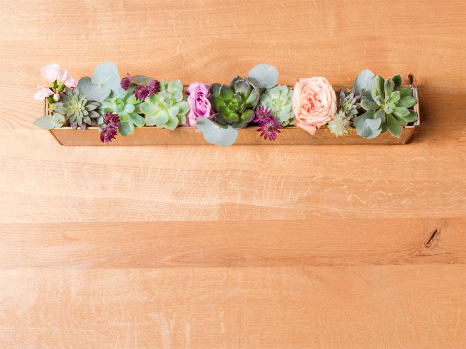 Centro de mesa con terrario suculentas
