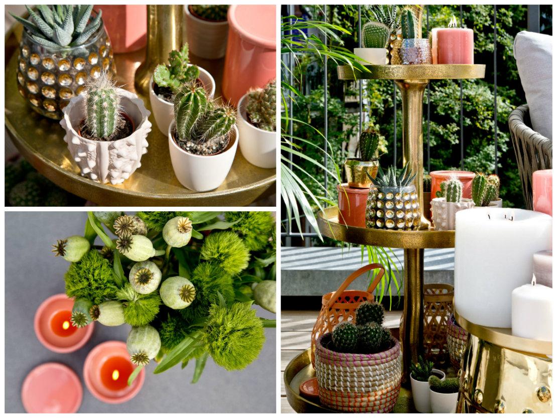 Westwing terraza perfecta verano plantas