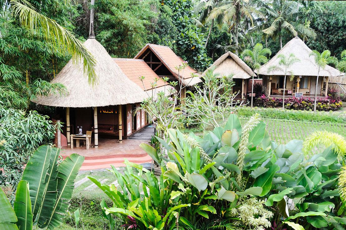 Vacaciones en Bali yoga