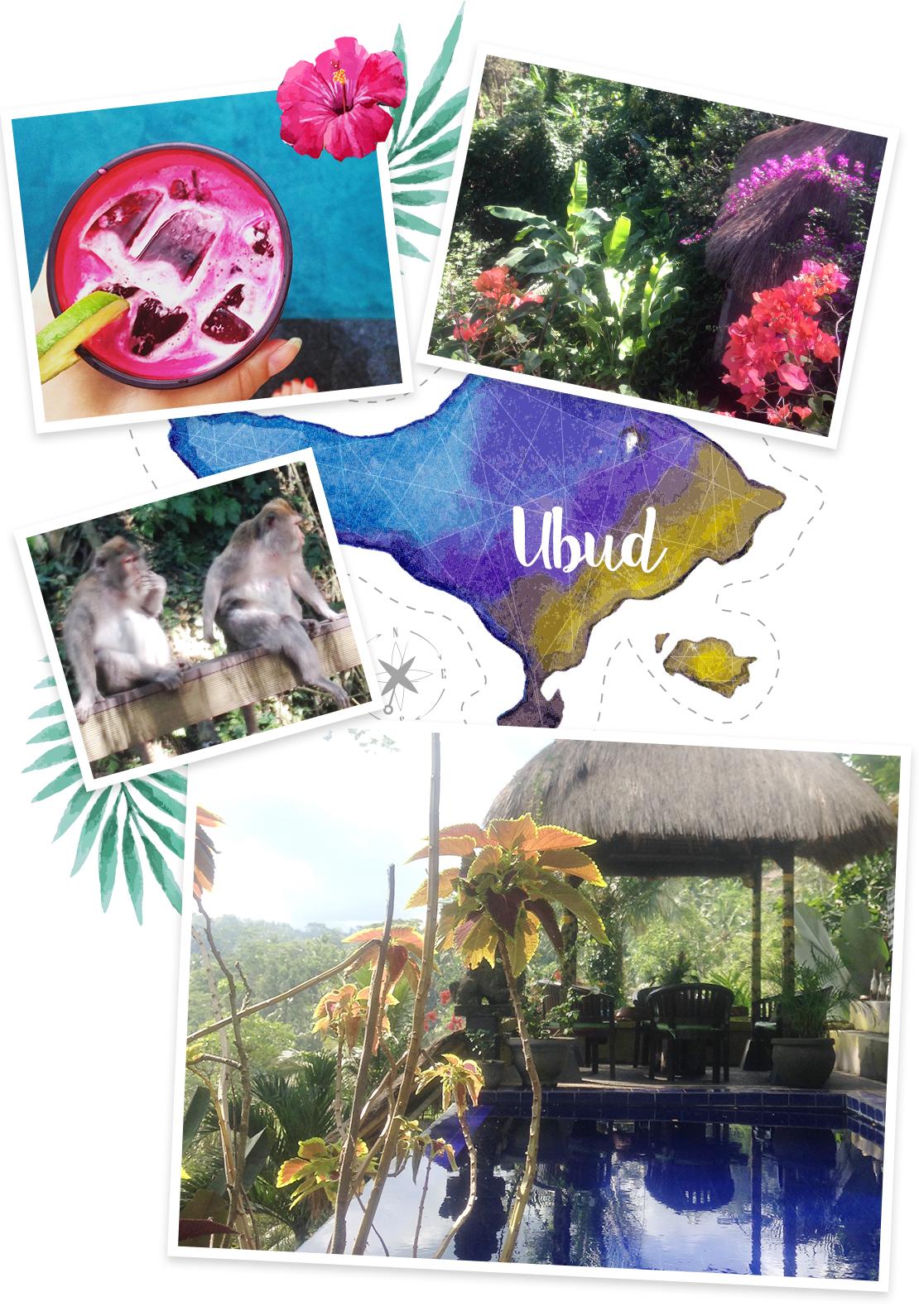 vacaciones en Bali Ubud