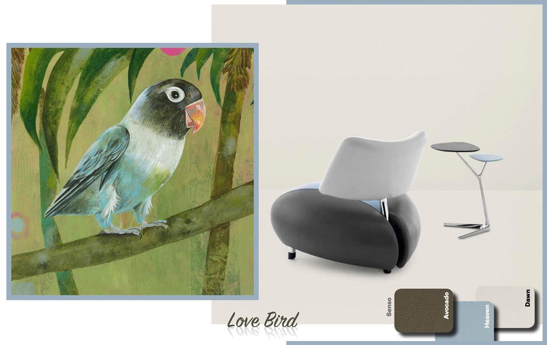 Leolux Pallone Paradise lovebird
