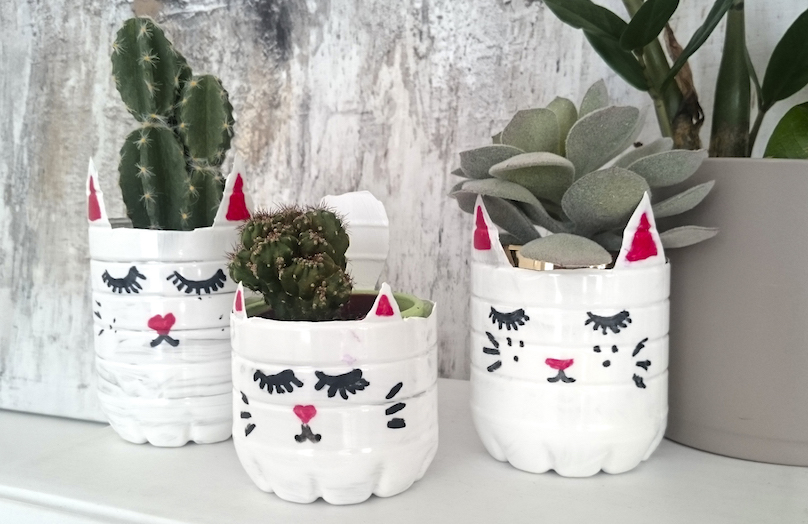 DIY Macetero gatito
