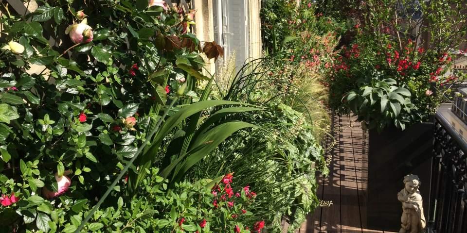 Les conseils d'Arthur de Vilmorin, paysagiste, pour aménager un balcon