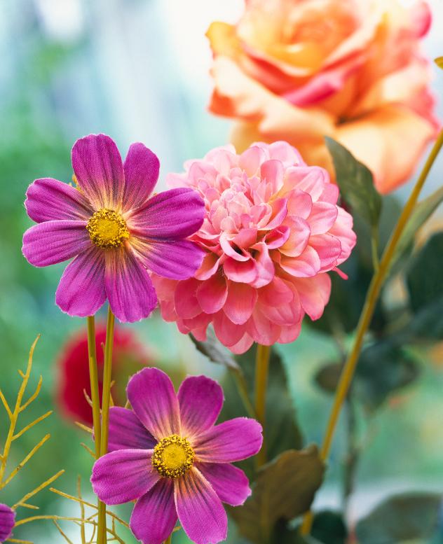 fausses vérités en matières de décoration : fleurs