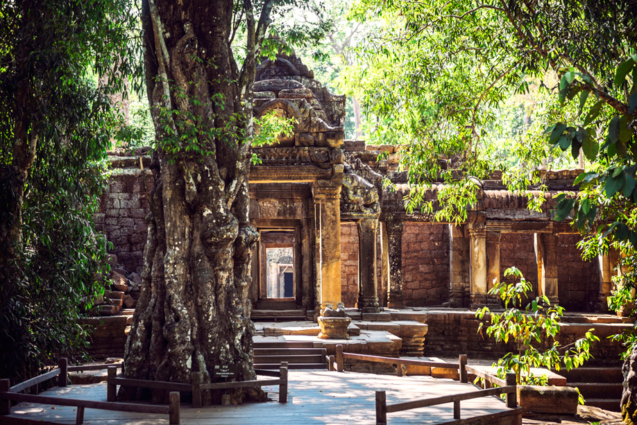 westwing-cambodge