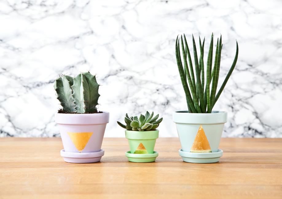 Westwing-pots-de-fleurs