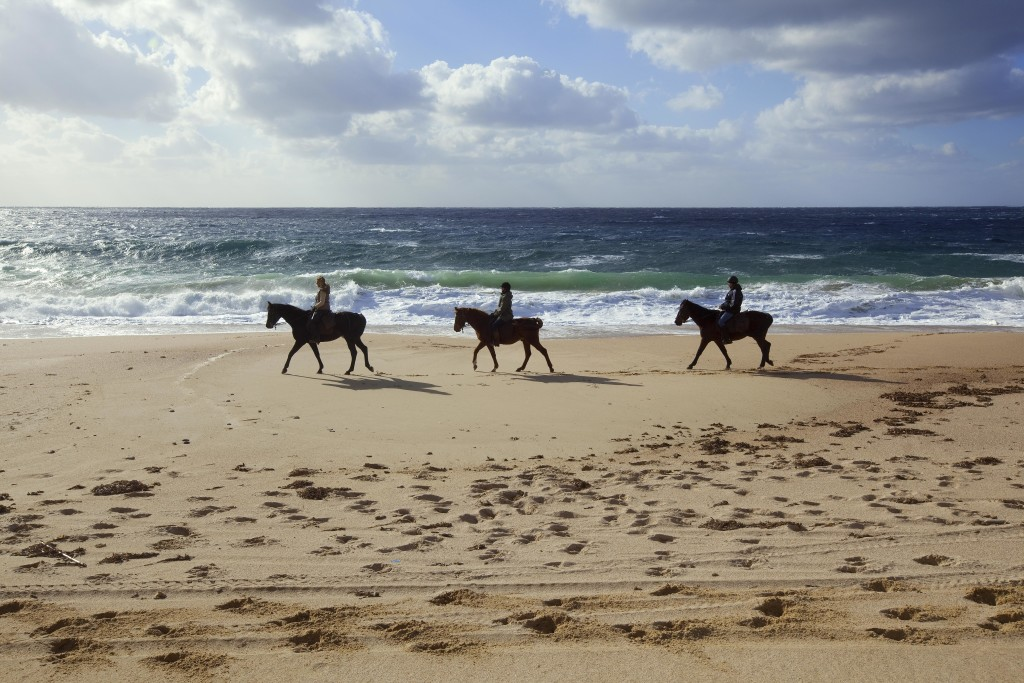Horse-back-riding_Murtoli