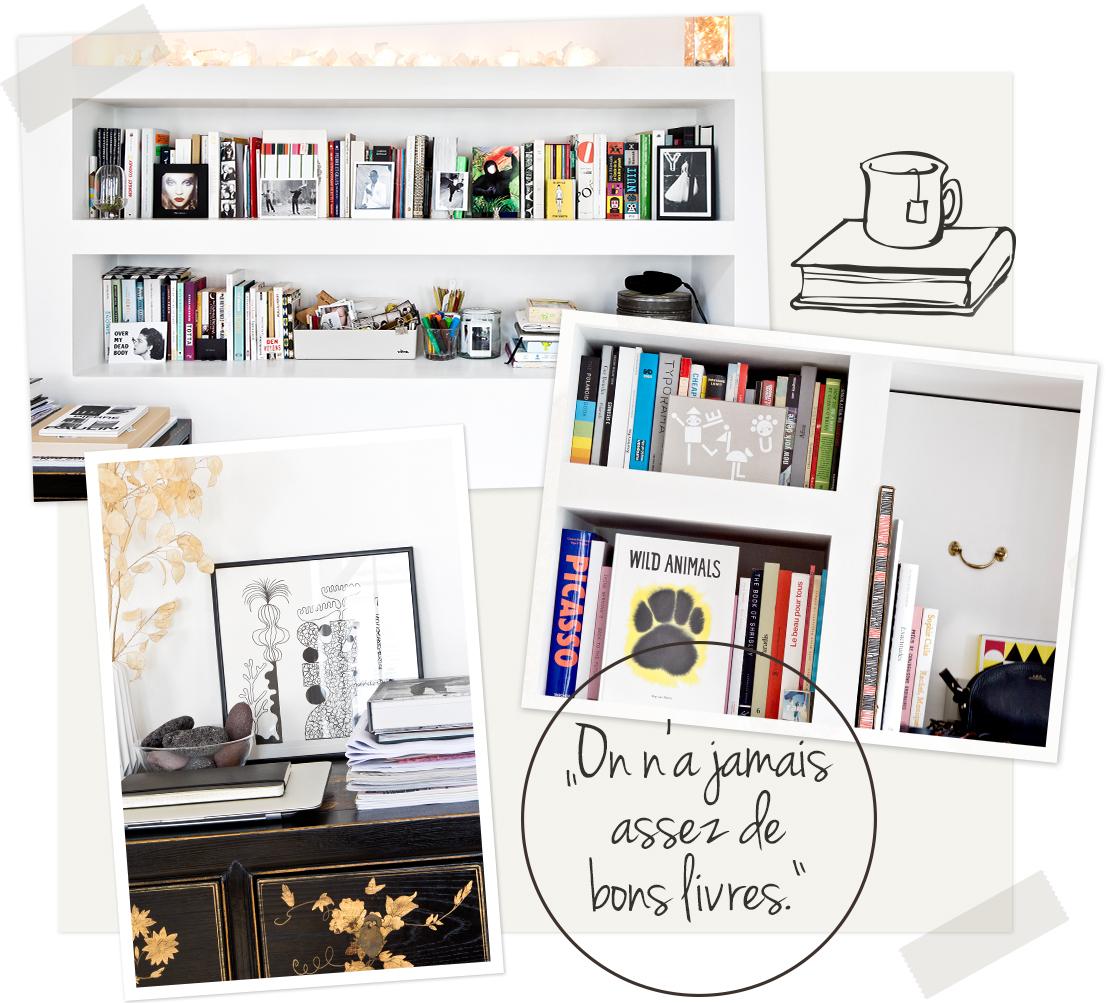 appartement bibliothèque livres décoration